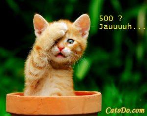 doh500